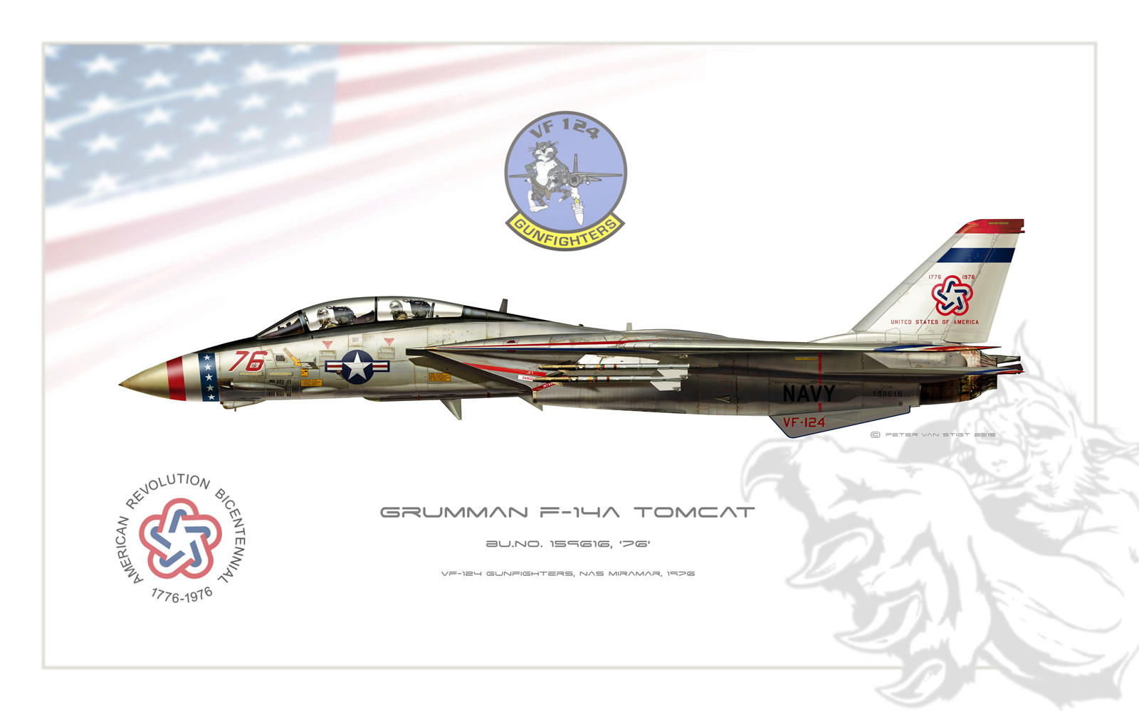 VF-124 Gunfighters Bicentennial F-14 Tomcat Profile
