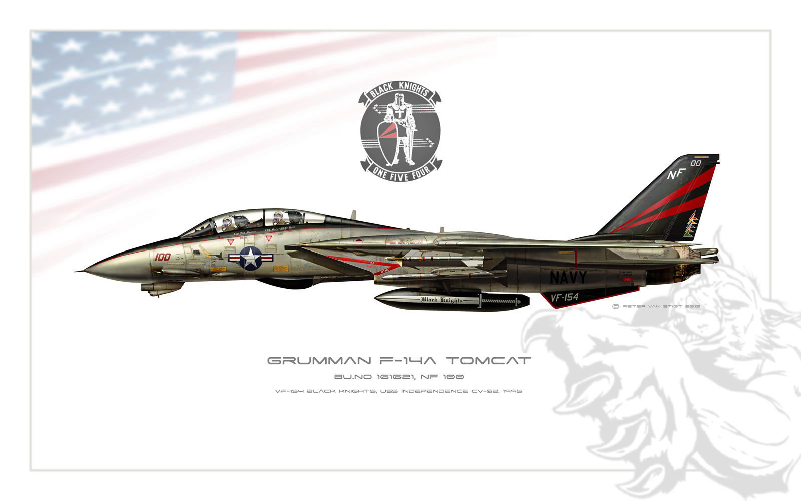 VF-154 Black Knights F-14 Tomcat Profile