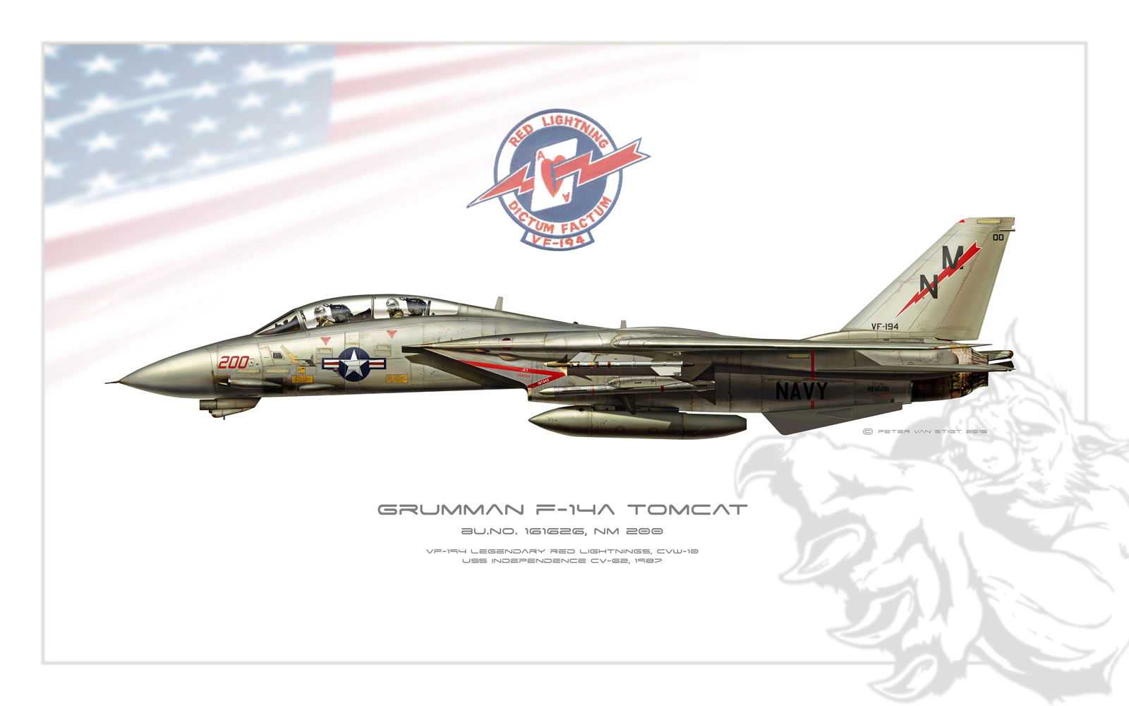 VF-194 Red Lightnings F-14 Tomcat Profile