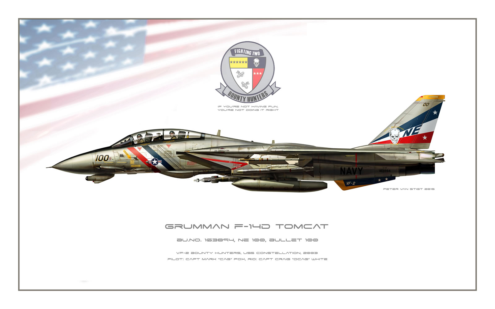 VF-2 Bounty Hunters F-14D Tomcat Profile