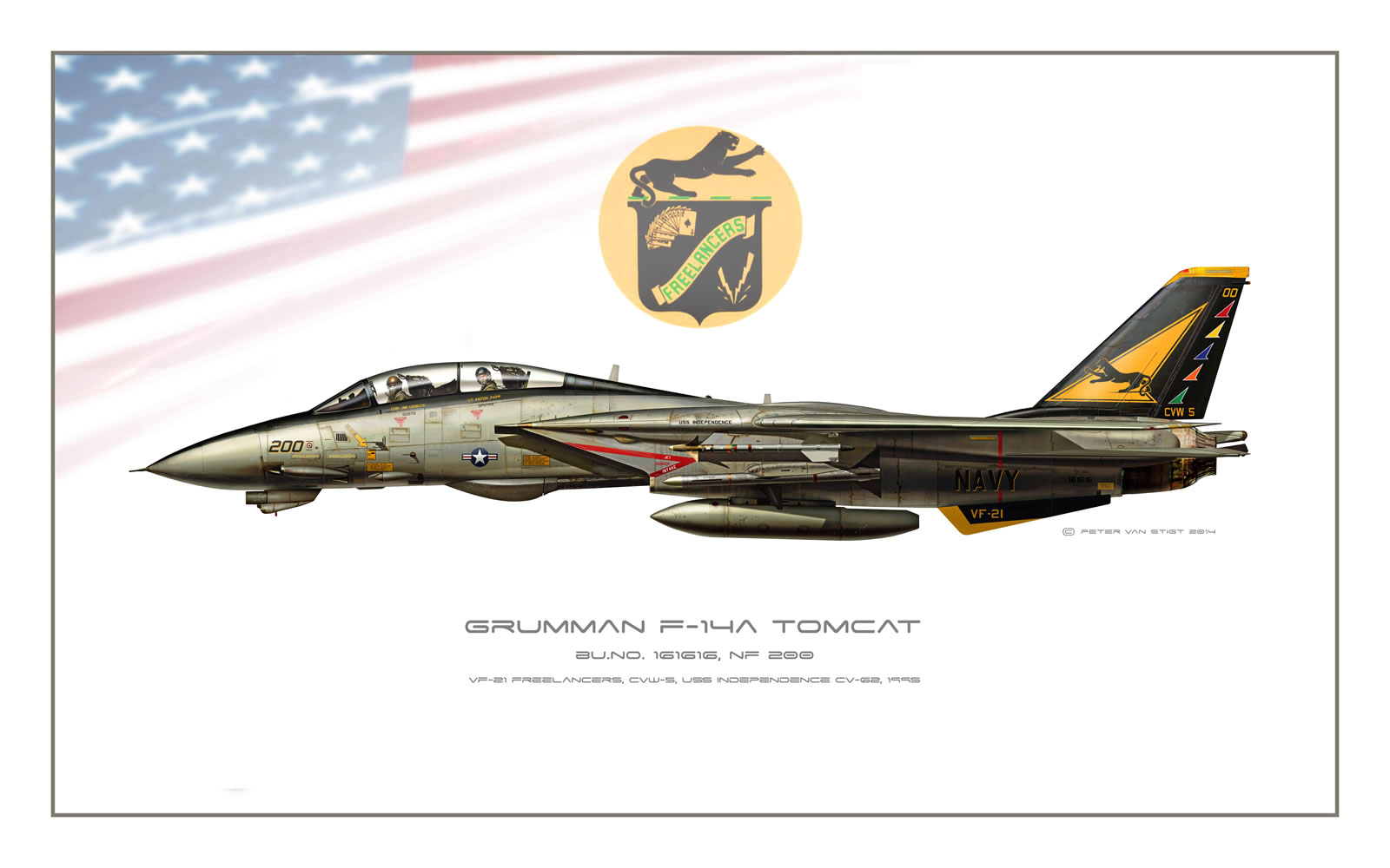 VF-21 Freelancers F-14 Tomcat Profile