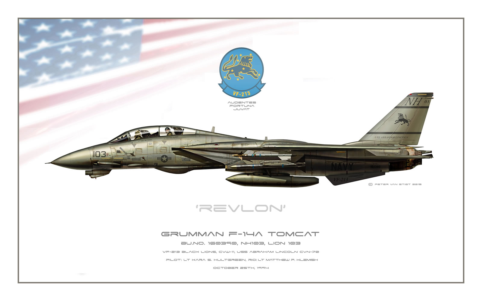 VF-213 Black Lions F-14A Tomcat Profile