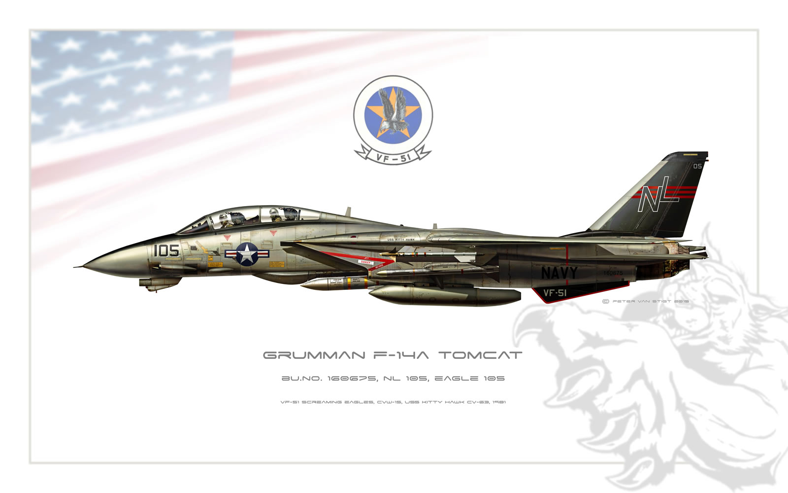 VF-51 Screaming Eagles F-14 Tomcat Profile