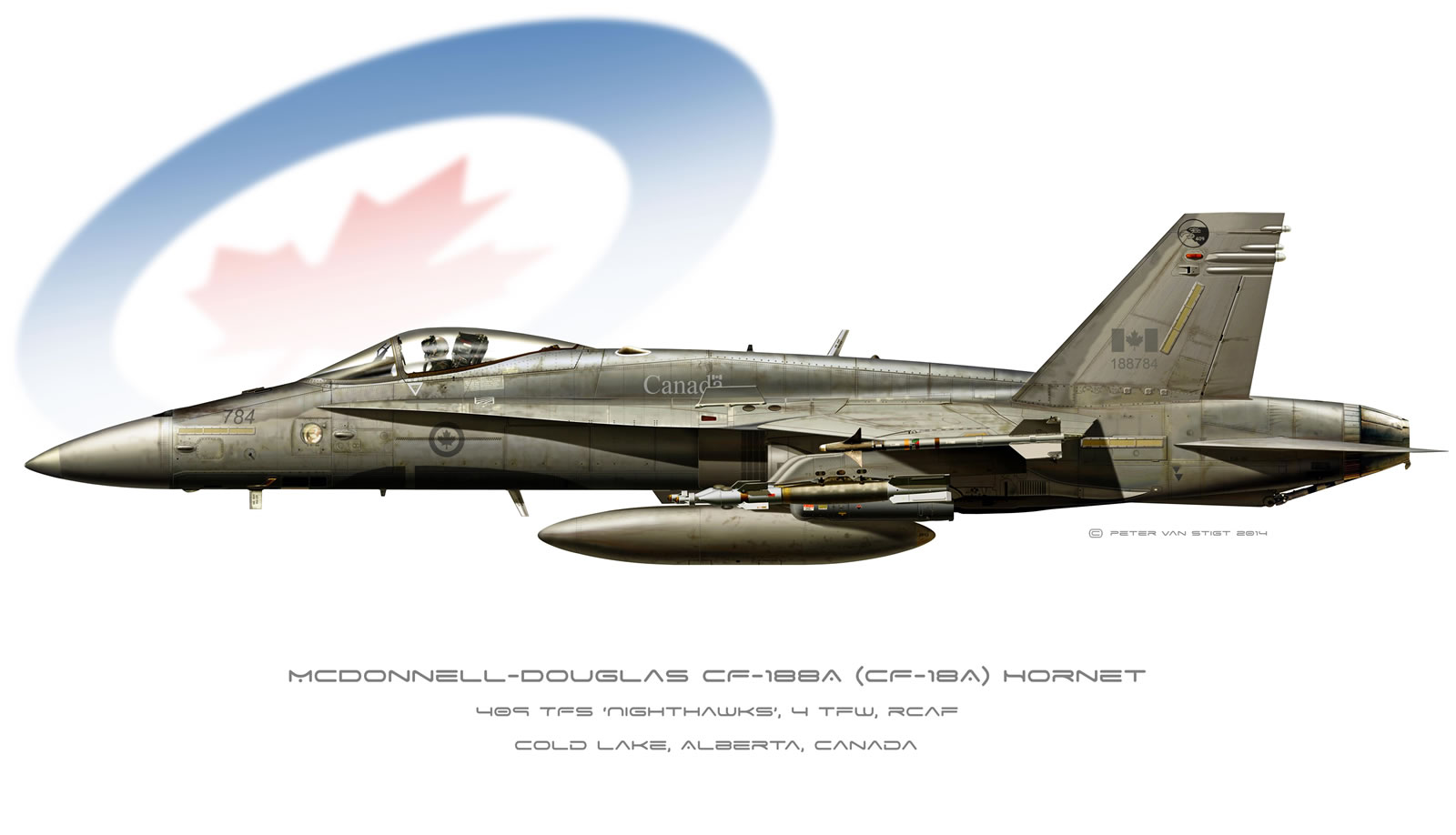 Canadian Air Force Hornet Profile