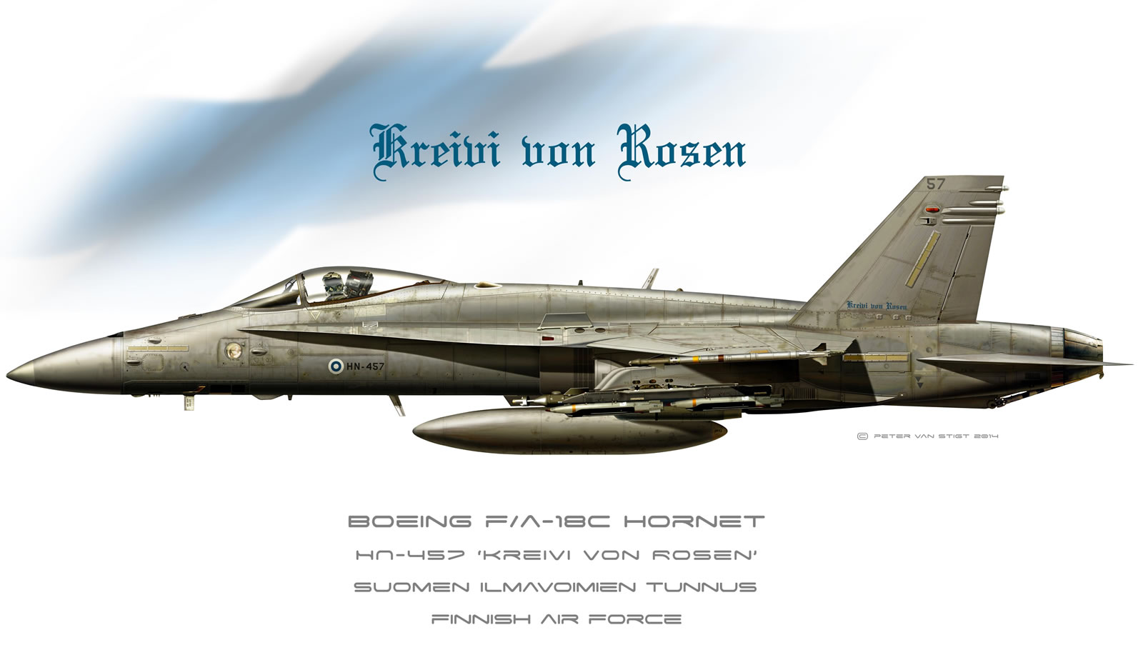 Finland Air Force Hornet Profile