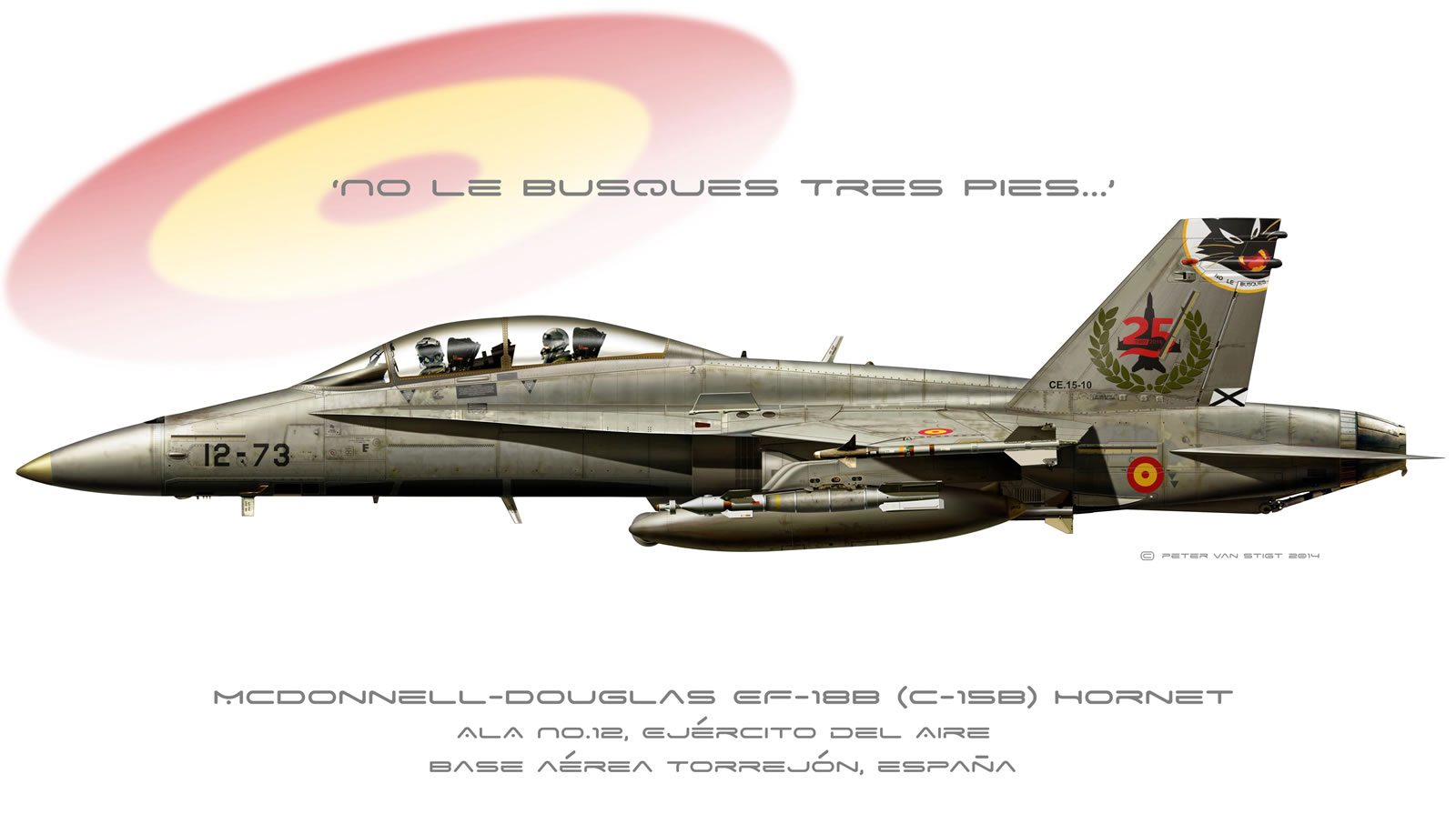 Spanish Air Force Hornet Profile