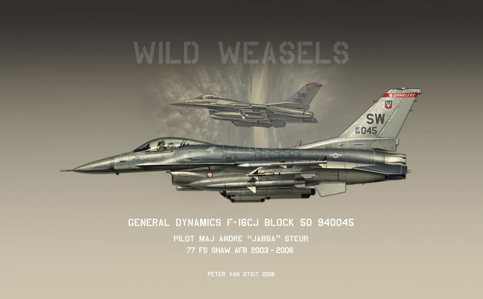 US Air Force F-16C 94-0045 Profile