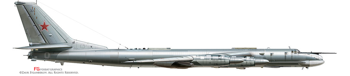 Tu-95MS Profile